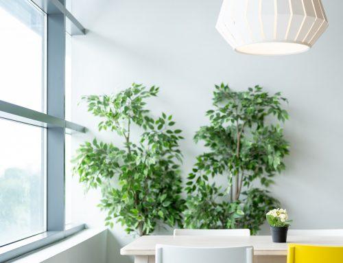 ¿Habitas en una vivienda sana?